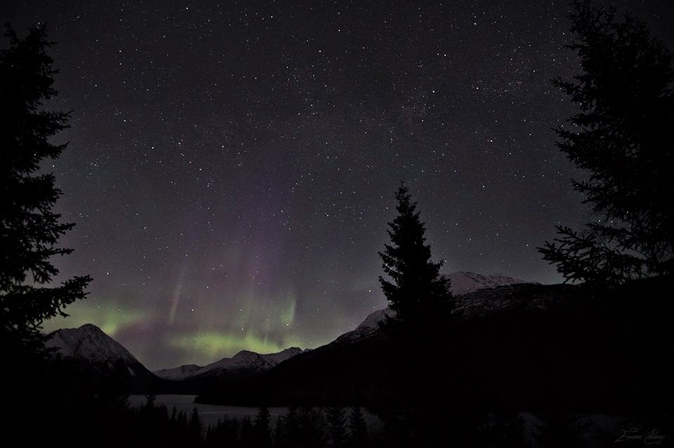 Aurora Over Trail Lake